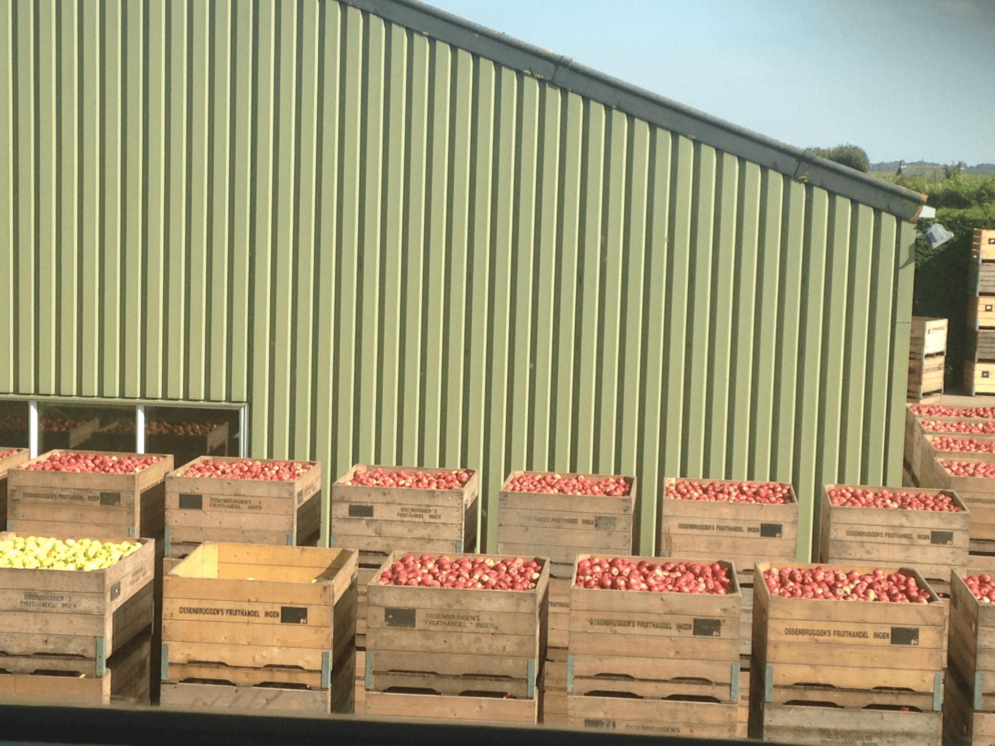 Fruitbedrijf Van den Berge: Over ons bedrijf