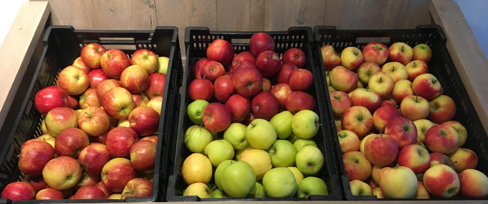 Fruitbedrijf Van den Berge_gemengde appels