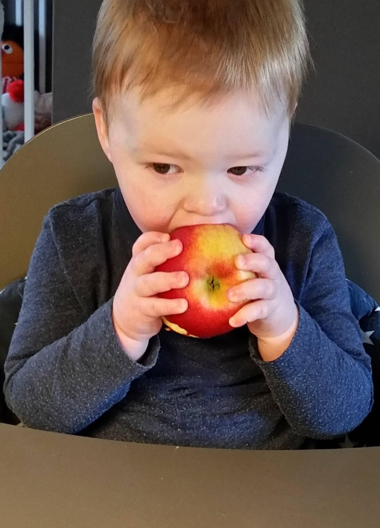 Fruitbedrijf Van den Berge_Thijs_4