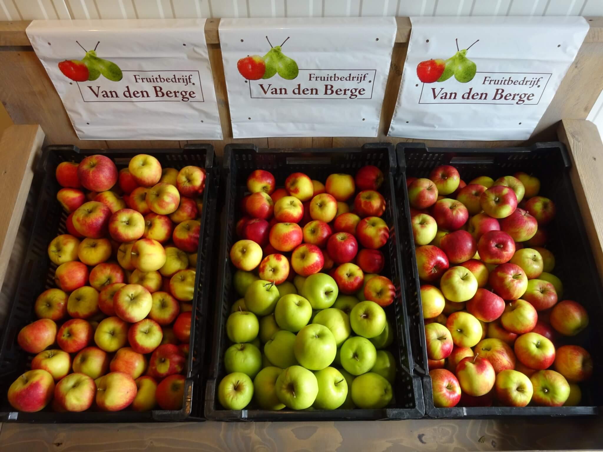 Fruitbedrijf Van den Berge_Handappels naar keuze