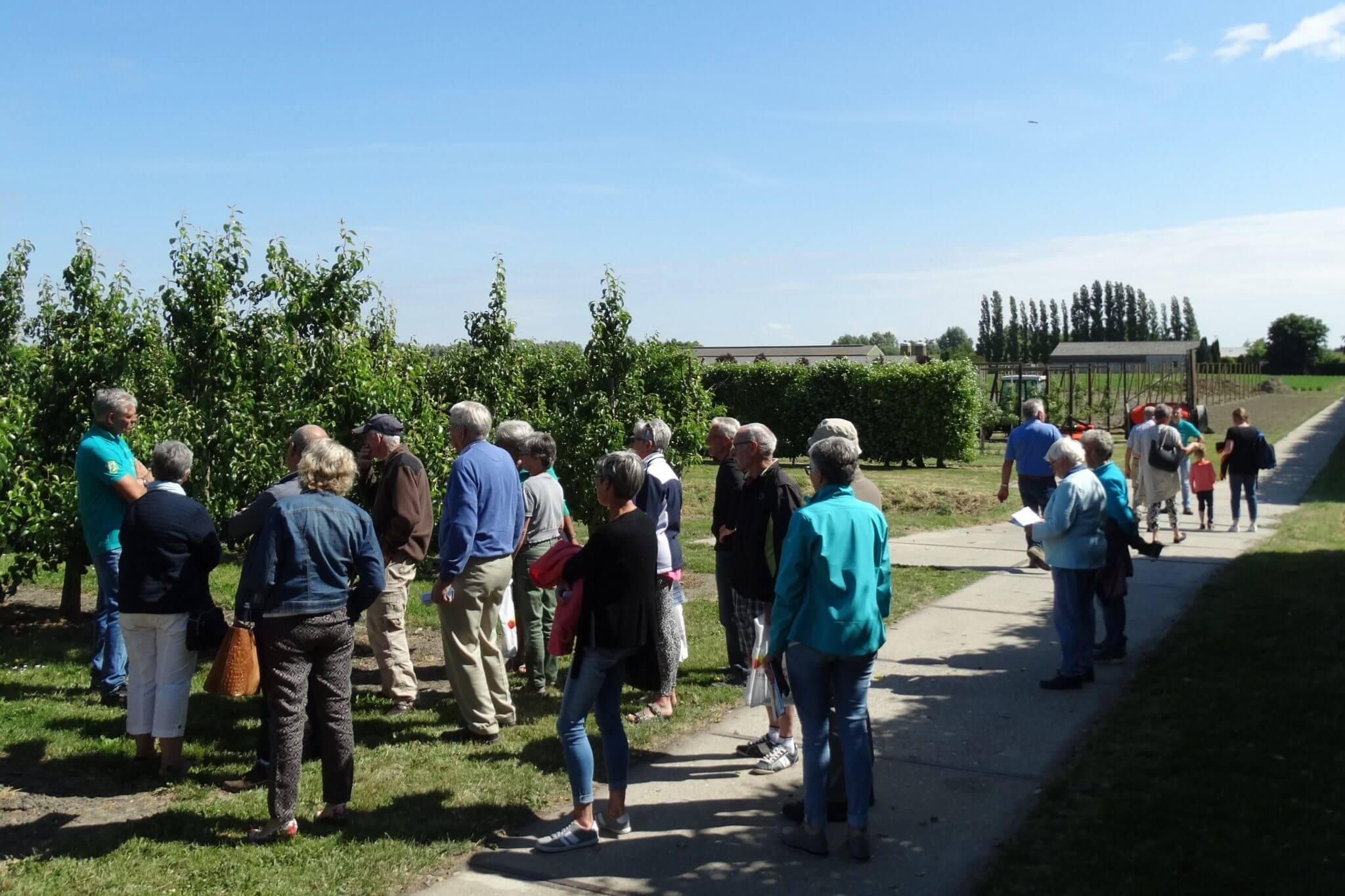 Fruitbedrijf Van den Berge_Buurten bij de Boer_rondleiding boomgaard6