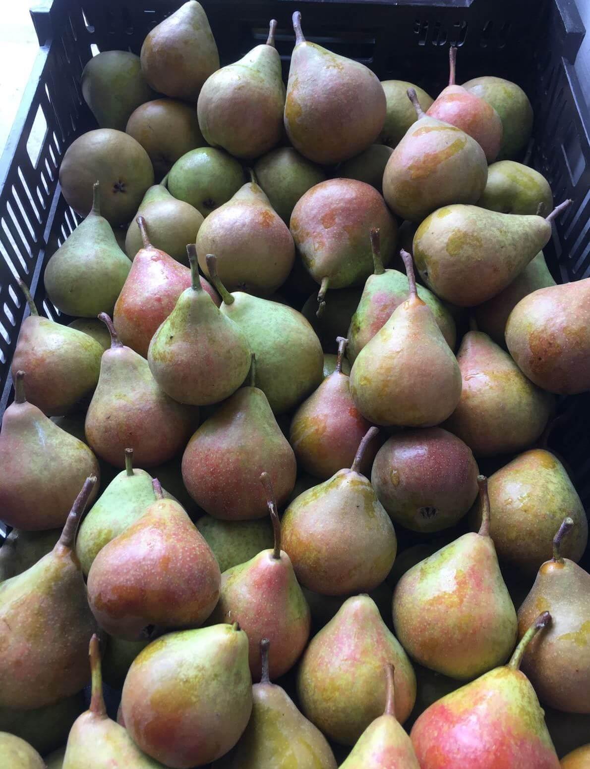 De actie voor het komend weekend is winkeltje 'De Fruithoek' is dan ook: