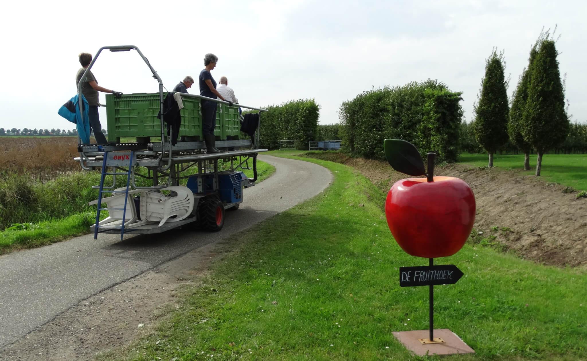 Fruitbedrijf Van den Berge_Pluk 2017_10