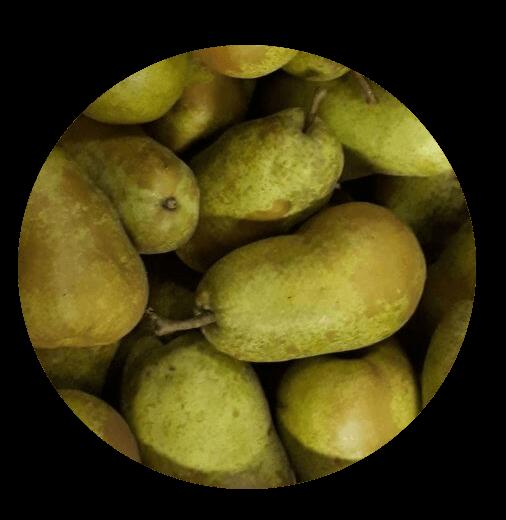 Fruitbedrijf Van den Berge: Fruithoek Triomph de Vienne