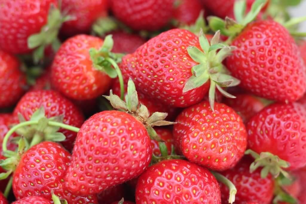 Fruitbedrijf Van den Berge aardbeien 3