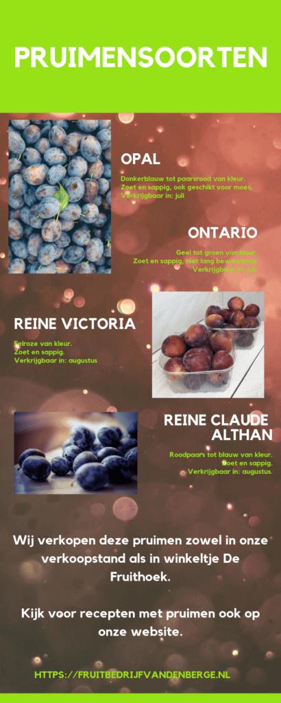 Fruitbedrijf Van den Berge: Pruimensoorten