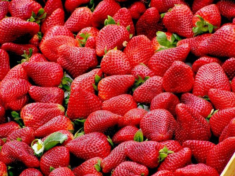 Fruitbedrijf Van den Berge-aardbeien