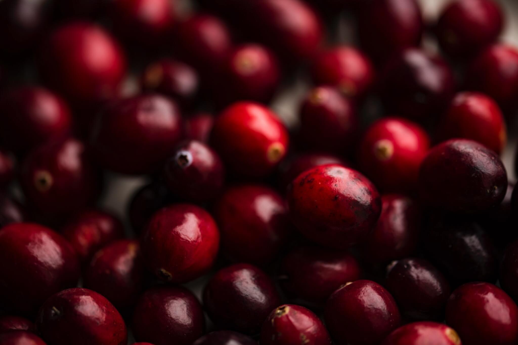 Fruitbedrijf Van den Berge: cranberries
