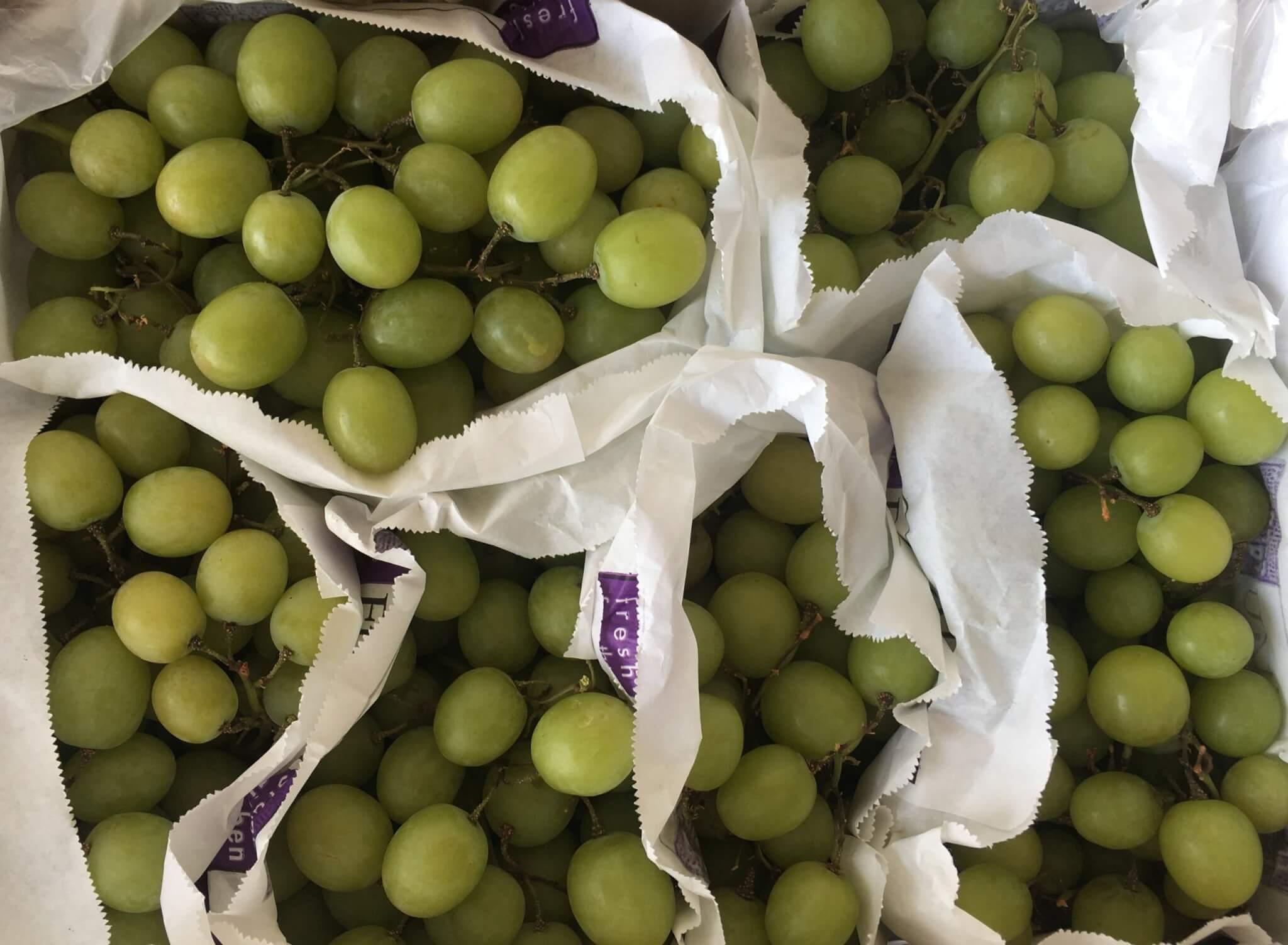 Fruitbedrijf Van den Berge: witte druiven