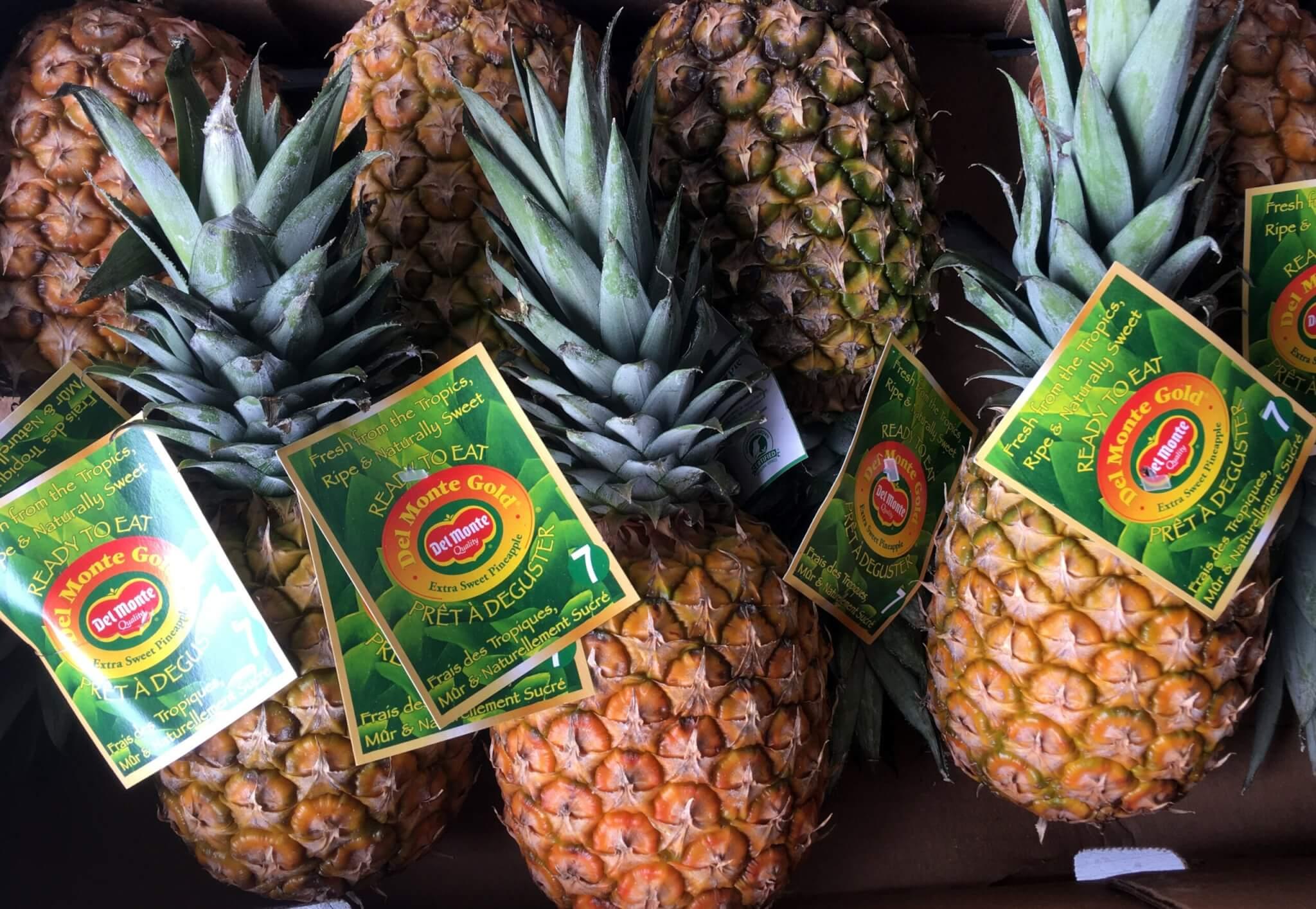 Fruitbedrijf Van den Berge Ananas