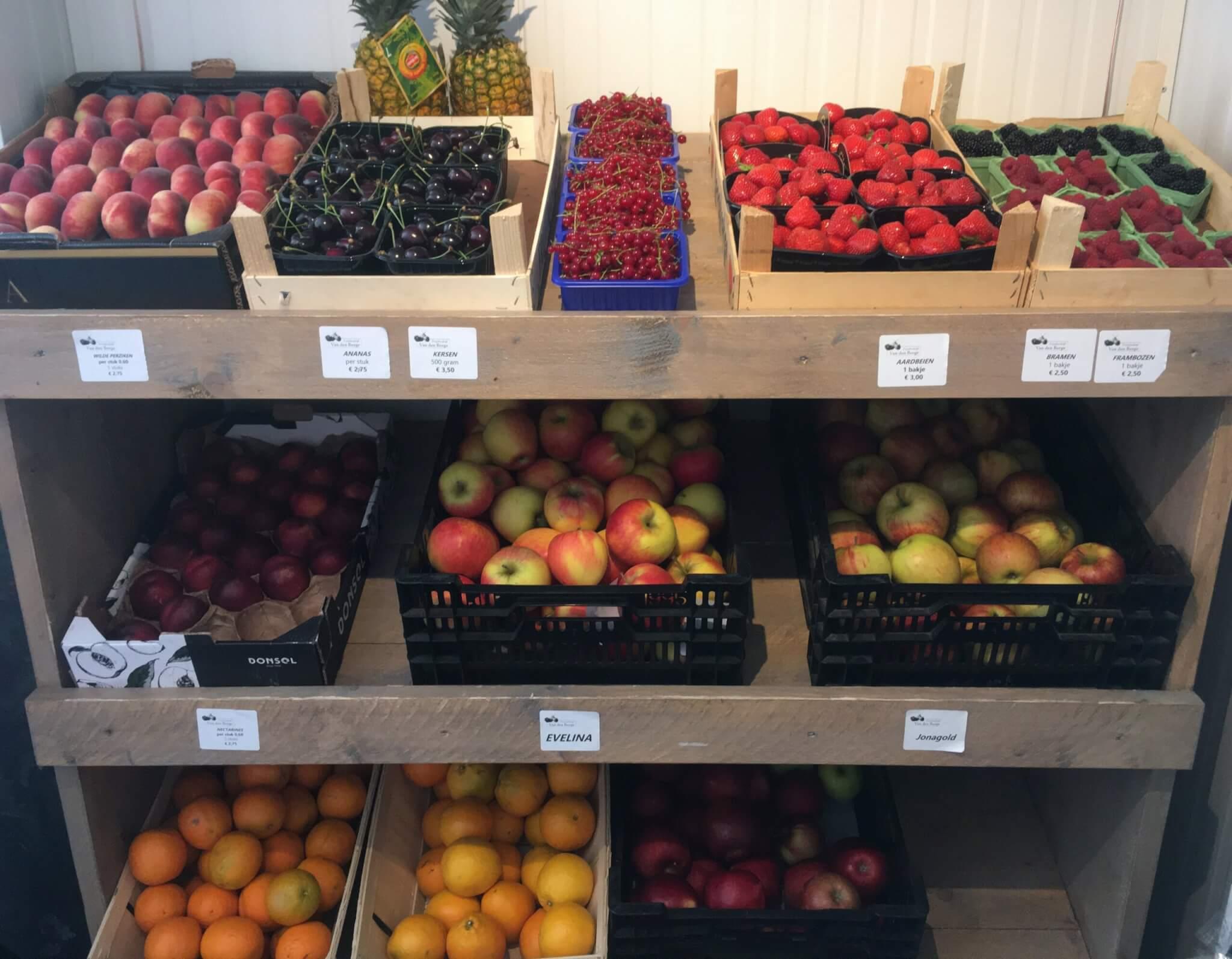 Fruitbedrijf Van den Berge: Appels en Zomerfruit