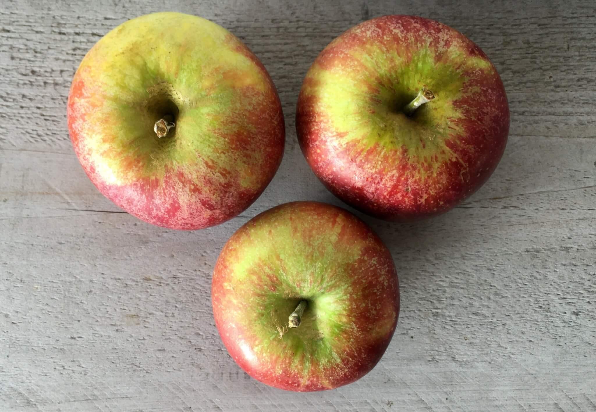 Fruitbedrijf Van den Berge Cox