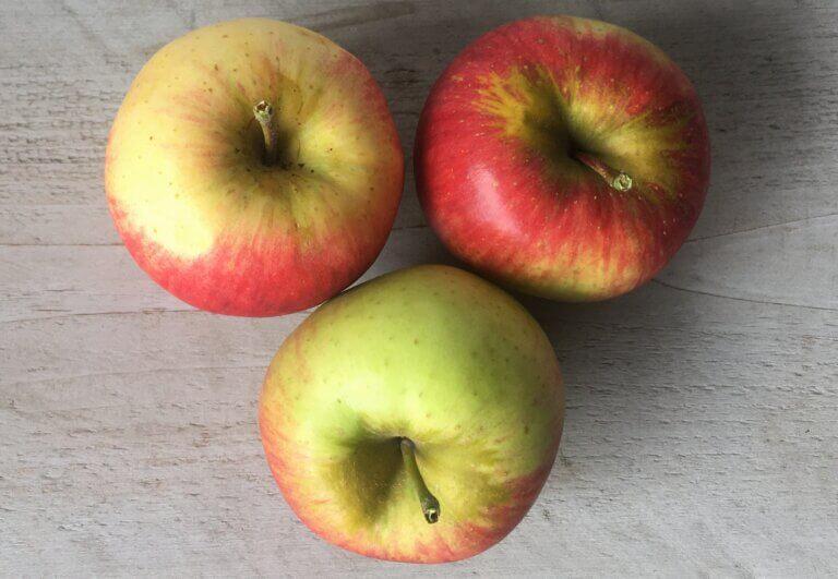 Fruitbedrijf Van den Berge Elstar